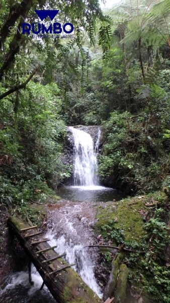 cascada guatemala