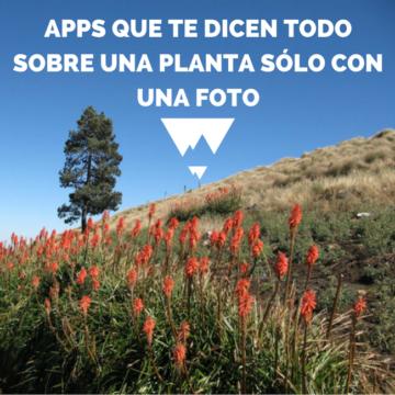 apps para amantes de la naturaleza botanica