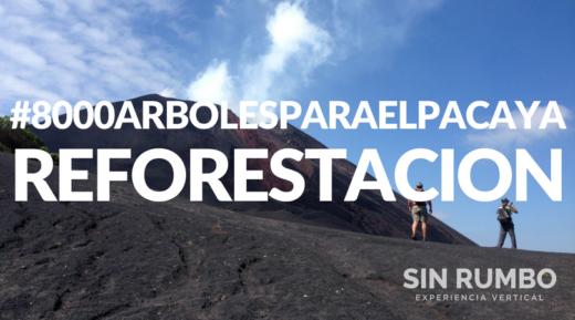 reforestacion volcan pacaya